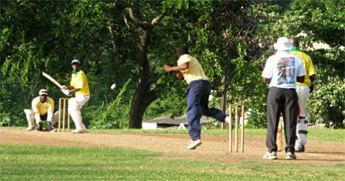 Cricket in the Botanical Gardens