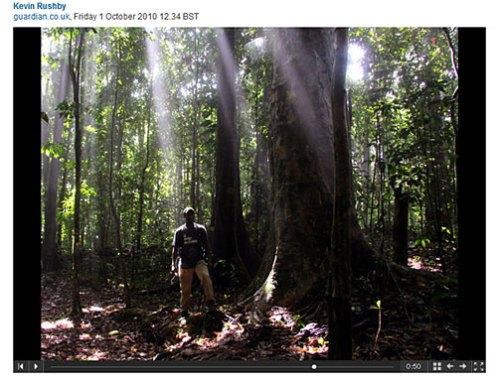 Wild Side of Dominica Slideshow